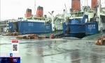 琼州海峡日均客运量已超9万人次