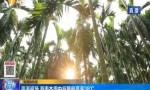 高温返场 海南本周中后期最高温38℃