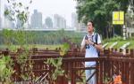 最美科技人:森林歌者 杨灿朝