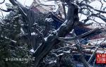 探秘传奇 北京孔庙与国子监博物馆