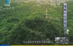 海南火山印记(下)