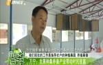 萬寧:發展種桑養蠶產業帶動村民致富