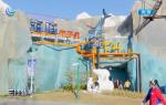 """上海海昌海洋公园开园一周年 科普新产品""""海底两万里""""首次亮相"""