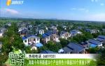 海南今年將新建30個產業特色小鎮逾200個美麗鄉村