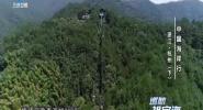 中国海岸行 浙江·杭州(下)