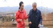 中國海岸行 山東·威海(下)