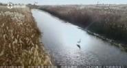大河息壤 湿地天堂