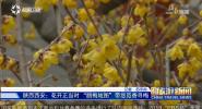 《中国旅游新闻》2019年01月30日