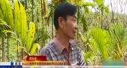海南警事:特殊材料铸成海南森林公安