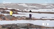 行者 北极留学生 寻根之旅