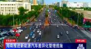 自贸进行时:海南推进新能源汽车差异化管理措施