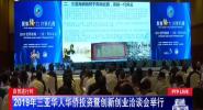 2019年三亚华人华侨投资暨创新创业洽谈会举行
