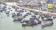 """防御臺風""""韋帕"""":漁船陸續回港避風 漁政部門24小時嚴陣以待"""