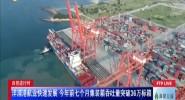 洋浦港航業快速發展 今年前七個月集裝箱吞吐量突破36萬標箱