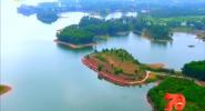 邁向自貿新高地:生態產業助發展 靜美定安展新貌