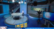 中國特色自由貿易港——經濟制度創新下的海南方向(四)