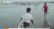 《中国喜事》 传家 大海的孩子