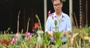 兰花种质资源的创新者——任羽