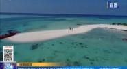 海南擬在三地試點建立海上環衛制度 近海海域面積將納入環衛保潔范圍