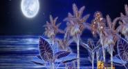 声乐课堂《月光洒落的地方》