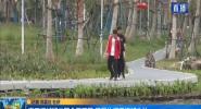海口红城湖公园全面开园 赏景休闲锻炼好去处