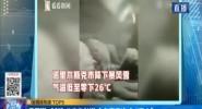 """俄羅斯-26℃ 公交車拋錨 全車乘客凍成""""雪人"""""""
