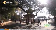 《健跑中國》2020年01月02日