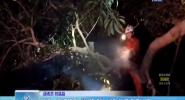 """昌江:高速路現""""攔路虎"""" 消防救援極速處置"""