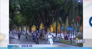 海口:龍昆南路車流密集 非機動車通行秩序良好