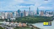 海南市场主体突破100万户 两年增长66%