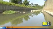 灌溉用水变色发臭 作物异常村民担忧