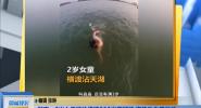 湖南:2岁女童游泳横渡200米宽湖泊 姿势动作很放松