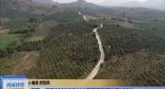 海南:明確2022年農村公路列養率要達到100%