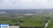 海南获得3.257亿元国家海洋生态保护修复资金