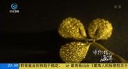 《博物馆里的海洋 金色中国》
