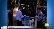海口警方开展违规养犬专项清查行动 摸排养犬人60余户