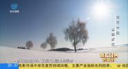 跟着经典去旅行 诗行中国 雪国新年