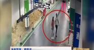 海南警事:雌雄盗