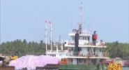海南警事:清除渔霸