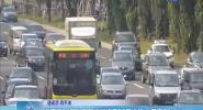海南第36期小客车摇号将于26日举行 中签率28.4%!