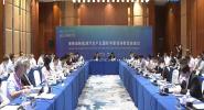 海南省新能源汽车产业国际专家咨询委员会第二次会议举行 万钢讲话 冯飞致辞