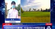 中国援建柬国家体育场顺利竣工 项目溢出效应为中柬两国实现共赢