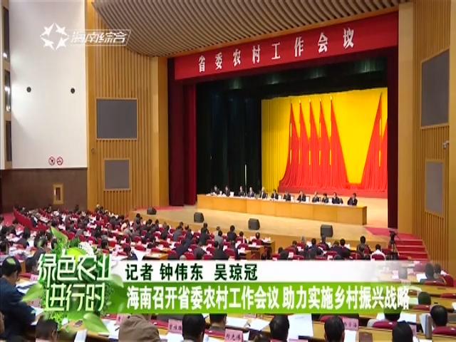海南召开省委农村工作会议 助力实施乡村振兴战略