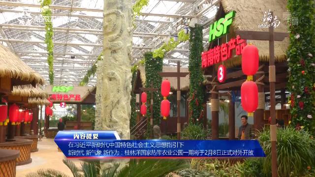 《海南新闻联播》完整版视频2018年02月06日