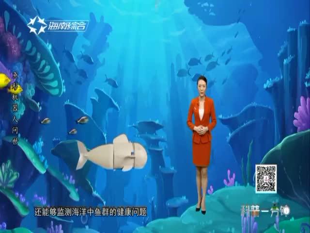 鱼形机器人问世