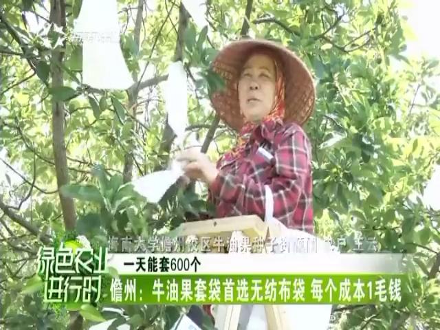 《绿色农业进行时》2018年05月17日