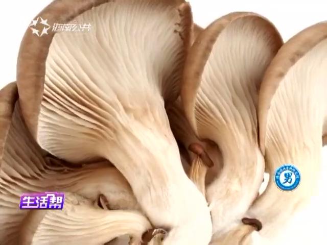 各种各样的菇类 营养价值不一样