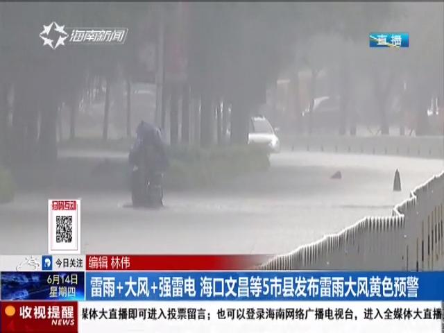 雷雨+大风+强雷电 海口文昌等5市县发布雷雨大风黄色预警