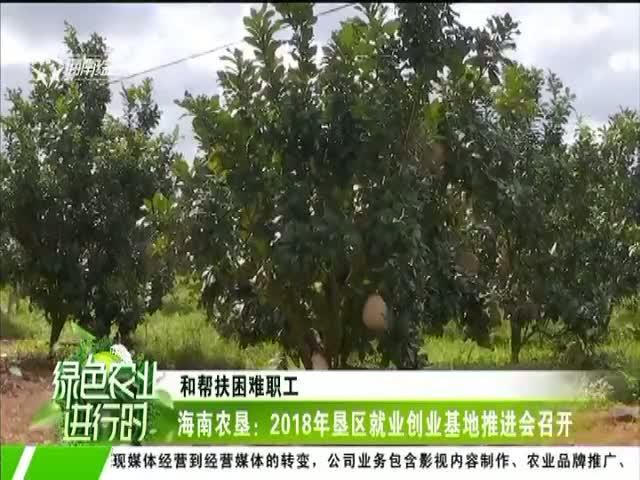 海南农垦:2018年垦区就业创业基地推进会召开