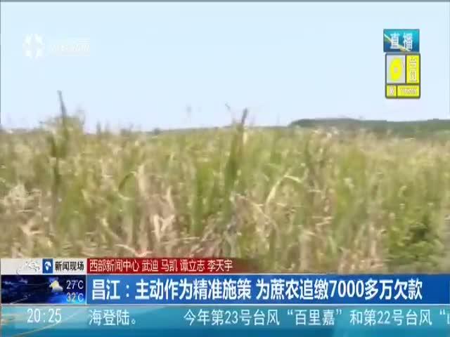 昌江:主动作为精准施策 为蔗农追缴7000多万欠款